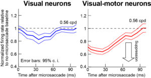 figure 4 summary neurons 0-50 post msac spikes and time course revised